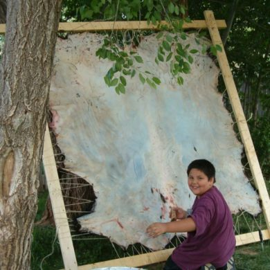 Preparing the buffalo hide