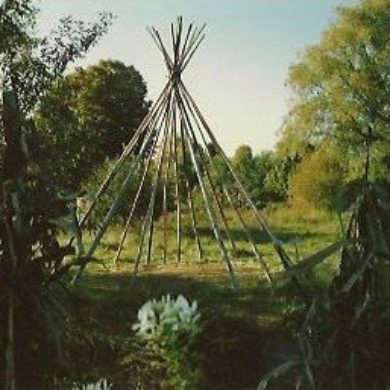 Tipi poles before the raising of the